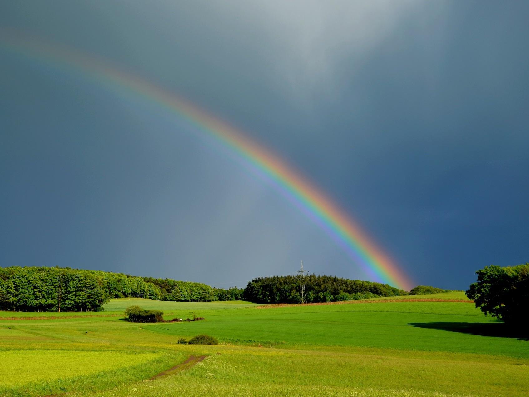 Regenboogschoteltje