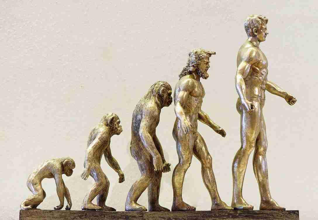 Lees meer over het artikel Eugène Dubois en de oorsprong van de mens